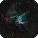 NGC 2359 (Thor's Helmet or Duck nebula),                                herwig_p
