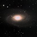 Bortle 4 Backyard Bode's Galaxy M81,                                SoDakAstronomyNut
