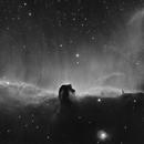 IC434 Horse Head Nebula,                                S. DAVID