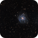 NGC7424 - a beautiful barred spiral in Grus,                                Rick Stevenson