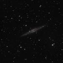 NGC891 LRGB,                                Steve Ibbotson