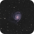 M101 (Pinwheel Galaxy) LHaRGB,                                Brian Sweeney