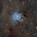 Close Up NGC-7023 - Iris Nebula,                                Jan Schubert