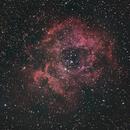 Rosette Nebula,                                Heidi Ihnen
