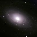 M 81 Bode's Galaxy,                                Michael Timm