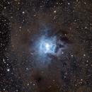 The Iris Nebula in One Shot Color,                                Alex Roberts