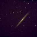 Splinter Galaxy,                                Robin Clark - EAA imager