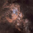 NGC 6357 War and Peace Nebula in narrowbands Hubbe Pallete,                                David Nguyen