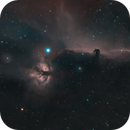 Alnitak, IC434, NGC2024, NGC2023,                                Stefano Zamblera