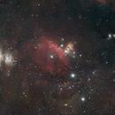 Orion Molecular Cloud,                                Damo