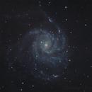 M101,                                Robert de Groot