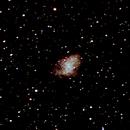 Crab Nebula M1,                                David Carr