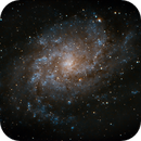 Triangulum Galaxy,                                Firstround