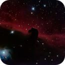 Horsehead Nebula,                                Bob Stewart