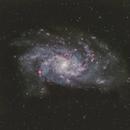 Messier 33,                                pete_xl