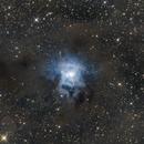 NGC7023,                                Stanislav Holub