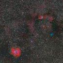 Umgebung Rosetten-Nebel,                                Peter Thelen