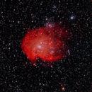 NGC 2174 WIDE FIELD,                                Joel Brewer