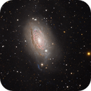 Messier 63 (Sunflower Galaxy) - Widefield,                                Min Xie