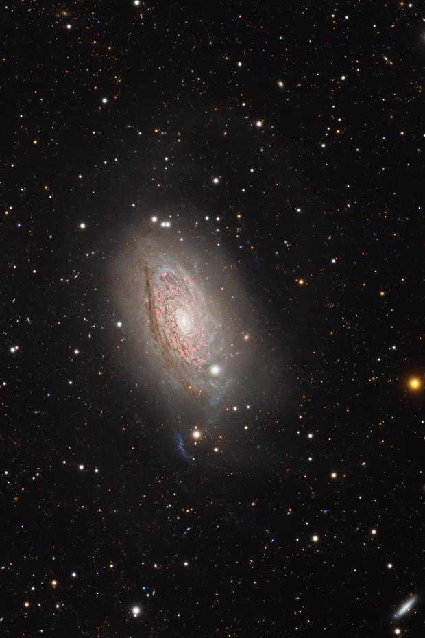 Messier 63 (Sunflower Galaxy) - Widefield,                                Min Xie