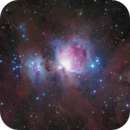 M42,                                Fluorine Zhu
