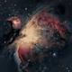 M42, The Orion Nebula,                                Wade Prunty