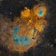 NGC 6334,                                Rodrigo González...