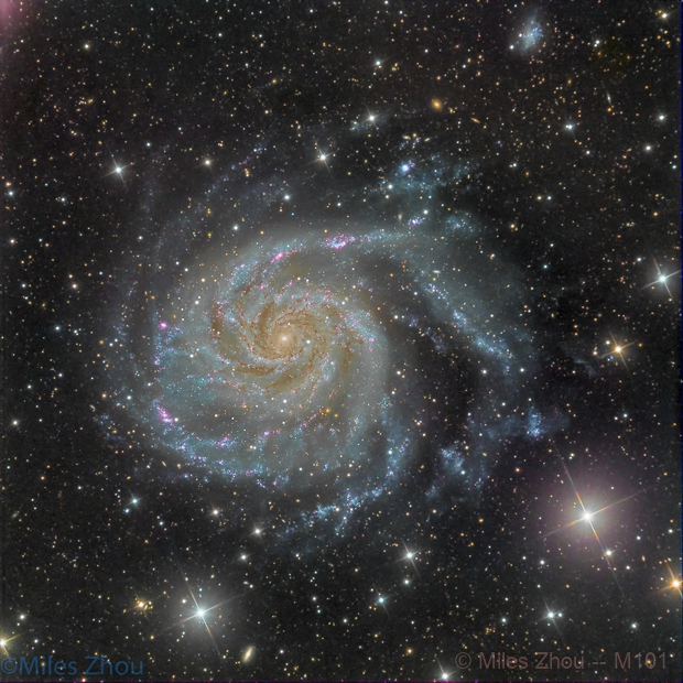 Pinwheel Galaxy (Messier 101),                                Miles Zhou