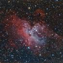 M16 in just the short RGB,                                Matt Jenkins