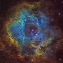 The Rosette Nebula (Caldwell 49) SHO Portrait Version,                                Oliver Czernetz