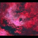 IC1318 Nebulosity around Sadr in Cygnus HaRGB reprocessed,                                Göran Nilsson