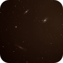 Leo Triplet,                                ScottyP5947