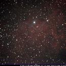 Flaming Star Nebula,                                Bruce Donzanti