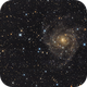 IC 342,                                Carlo Rocchi