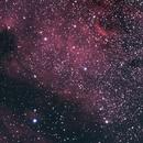 NGC 7000,                                M.W.Hoy