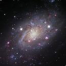 NGC 2403, The M33 twin's,                                Ruben Barbosa