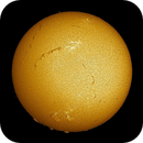 Filaments Across the Sun,                                sungazer