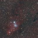 NGC2264,                                Aleksandr Brychev