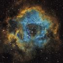 Rosette Nebula in SHO,                                Luc Germain