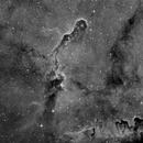 "IC 1386 the ""Trunk Nebula."" in Cepheus. 6 pane mosaic in Ha,                                Pat Rodgers"