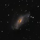 NGC 2146,                                lowenthalm
