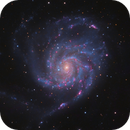 M101 LRGB,                                Christopher Gomez