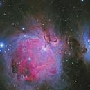 M42 & M43 (Orion Nebula),                                Rodrigo