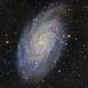 M33-2019,                                Bob J