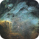 The Pelican Nebula,                                Jay Hall