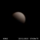 Venus,                                José Luis Castaño Azuela