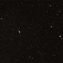 NGC5055 / M63,                                Stefano Zamblera