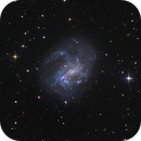NGC 4395,                                Robert Eder