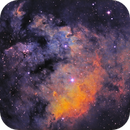 NGC 7822 - Modified Hubble - SHO,                                David Andra