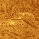 Sun in halfa,                                Alessandro Bianconi
